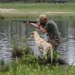 DUNN DOG RETRIEVERS