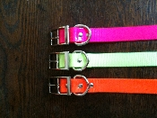 SUN GLO DOG COLLARS